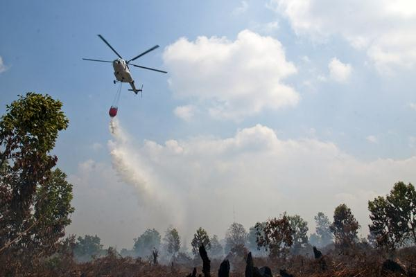 HUTAN BUKIT BETABUH TERBAKAR... Tim Sulit Padamkan Api