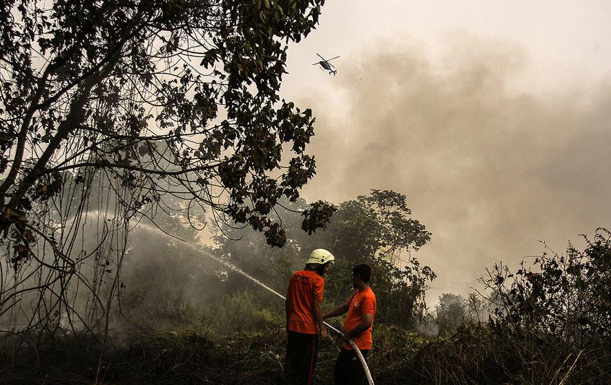 Sudah 5 Hari, Lebih 100 Hektar Lahan Terbakar di Desa Lukun-Kepulauan Meranti