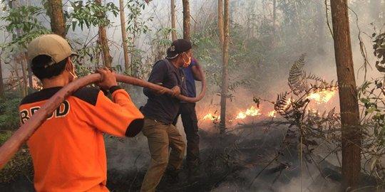 Awal 2019, 55 Hektare Hutan & Lahan di Riau Terbakar