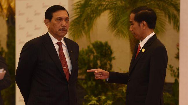 Minta Jokowi Setop Impor Garam, Pengamat: Luhut Cuci Tangan, kan Tinggal Buat Keputusan, Kok Minta Presiden