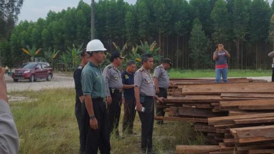 TNI dan Polri Amankan 731 Keping Kayu Olahan, Diduga Ilegal Logging dari Giam Siak Kecil