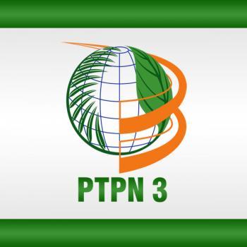 Pemkab Rohil Tuding PTPN III Tak Punya Izin Usaha Perkebunan