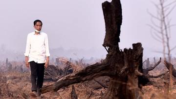Makin Parah, LAM Riau Minta Jokowi 'Turun Tangan' Tuntaskan Asap Riau