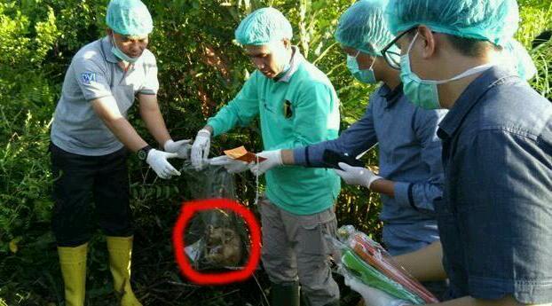 Dilaporkan Hilang, Driver Online Tri Widiyantoro Ditemukan Tinggal Tulang Belulang