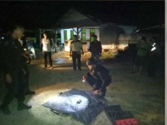 Awalnya Dikira Batu, Ternyata Pria di Riau Ini Temukan Dua Granat Nenas