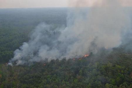 Titik Api di Sumatera Meningkat, 12 Hotspot Ada di Provinsi Riau